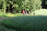 Wanderung und Abschlussveranstaltung