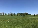 Landschaft um Plech