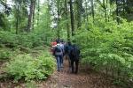 Tag des Wanderns 2019 - Wanderung zur Geißlochhöhle_10