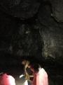 Tag des Wanderns 2019 - Wanderung zur Geißlochhöhle_23
